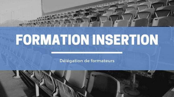 formateur insertion